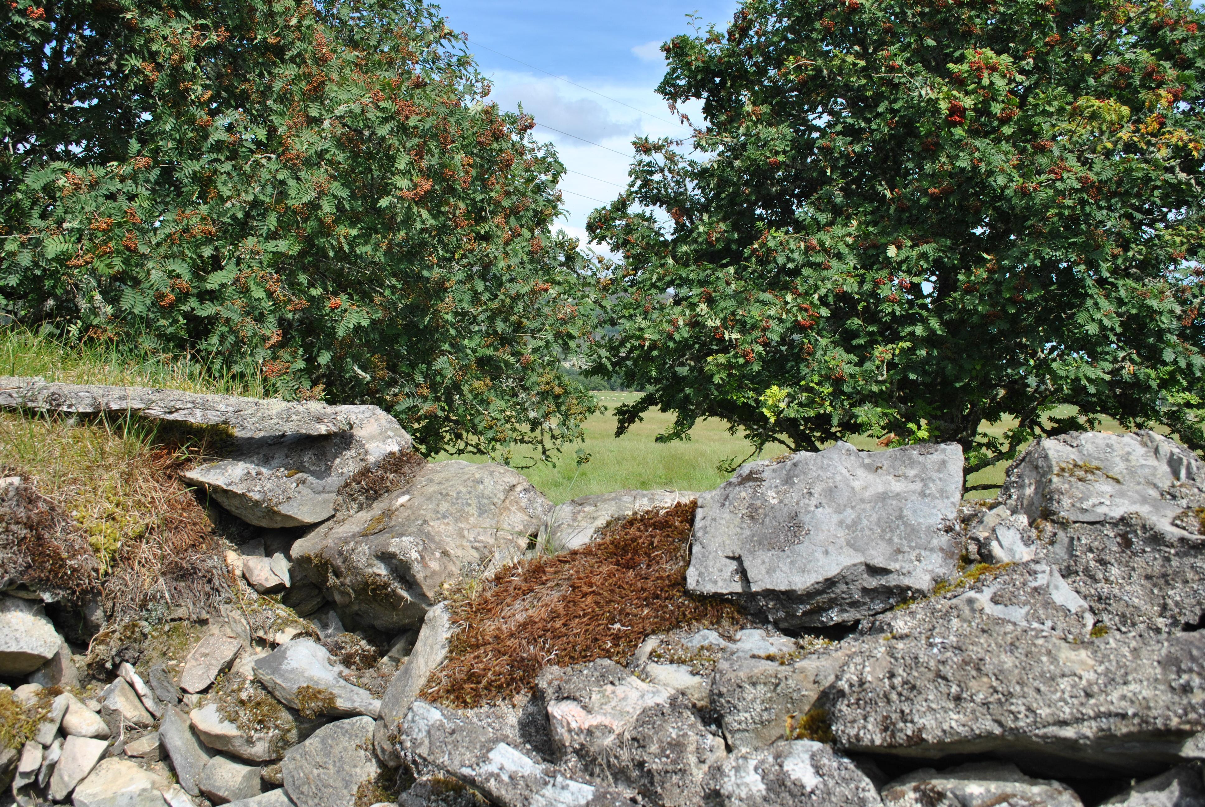 To Ward Off Evil Spirits Graveyards Of Sotland