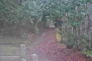 Tomnahurich graveyard, Inverness (19)