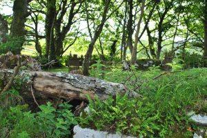 Merkadale graveyard, Isle of Skye