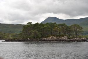 Loch Maree (6)