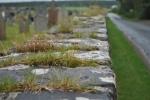 Ardersier graveyard