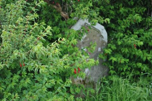 Kilmore graveyard, Isle of Skye