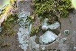 Struy old burial ground (8)