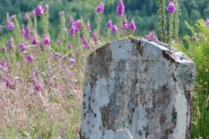 graveyard, island, Green Isle