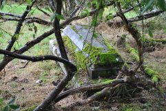 Chapelton Burial Ground (1)