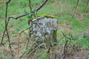 Chapelton Burial Ground (17)