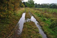 Chapelton Burial Ground (2)