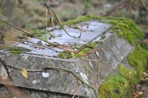 Chapelton Burial Ground (21)