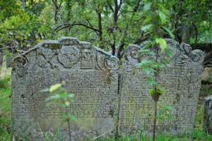 Chapelton Burial Ground (31)