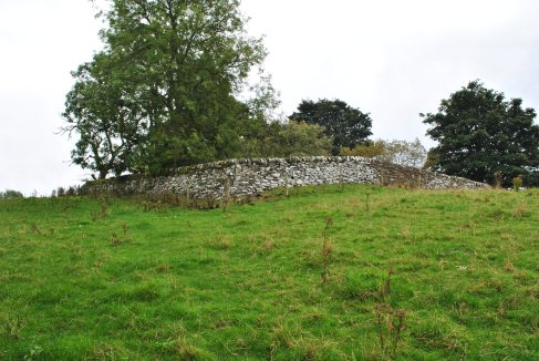 Chapelton Burial Ground (41)