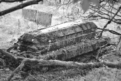 Chapelton Burial Ground monochr (2)