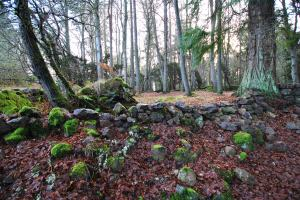 Old Craigs Inverness (3)