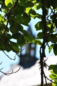 Acharacle graveyard (3)