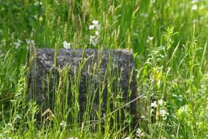 kinlochlaigh-old-churchyard-13