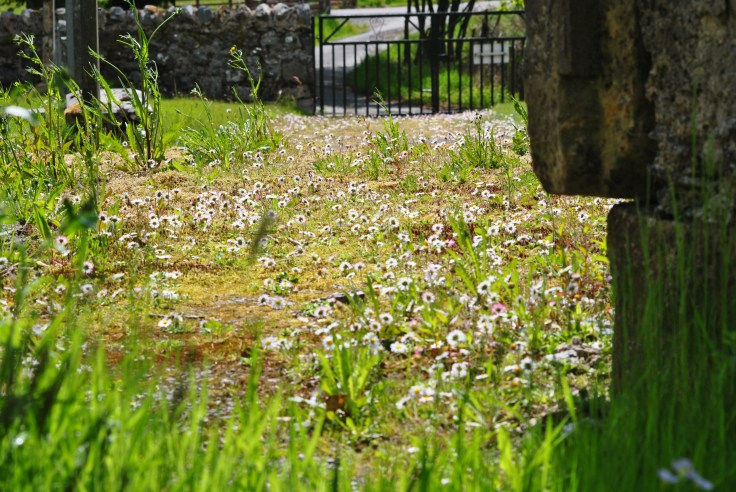 kinlochlaigh-old-churchyard-14