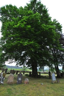 Cassley Falls Cemetery (24)