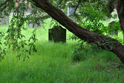 Greyfriars burial ground, Perth (74)