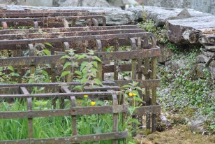 Logeirait Churchyard (26)