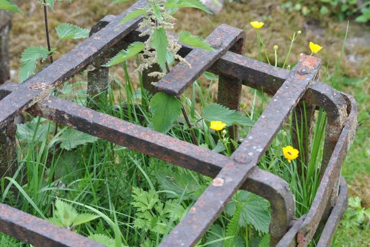 Logierait Churchyard (28)