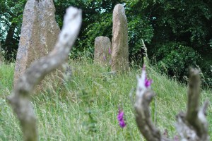 Sunhoney is one of about a hundred stone circles in Aberdeenshire.