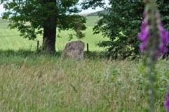 Sunhoney Stone Circle (6)