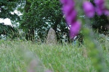 Sunhoney Stone Circle (9)