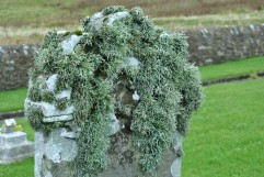 Isbister graveyard, Shetland Mainland (1)