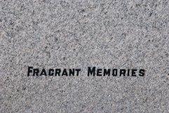 Wellshill Cemetery, Perth (38)