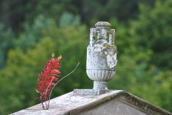 #grave # Morvern #Donald LIvingstone