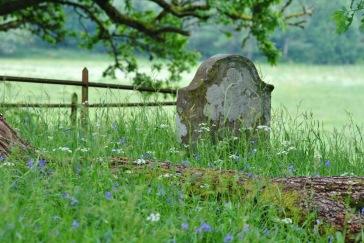 Little Leny and Buchanan Burial Chapel, Callander (10)