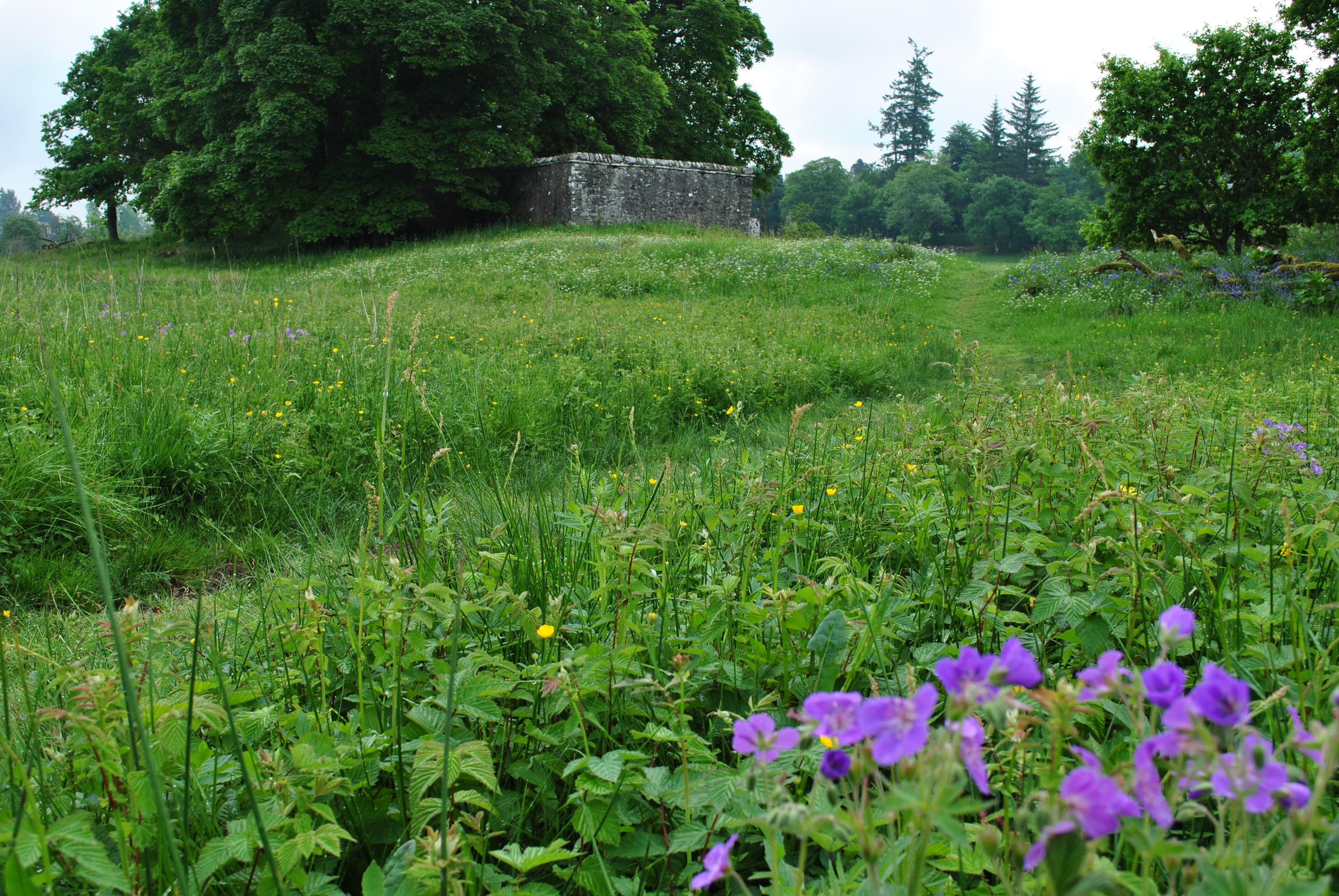 The Highland's sacred bard