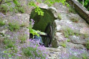 Kilmahog Burial Ground, Trossachs (8)