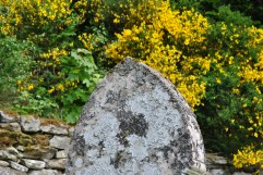Leckine Burial Ground, MacLaren (22)