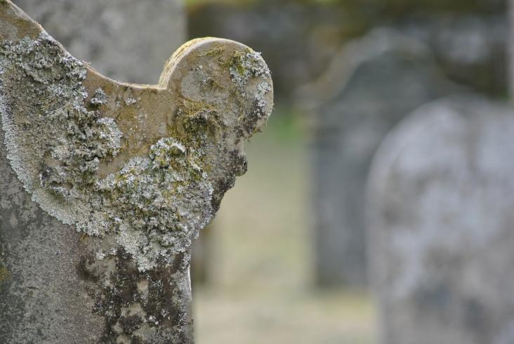 Killin Old Kirkyard (21)