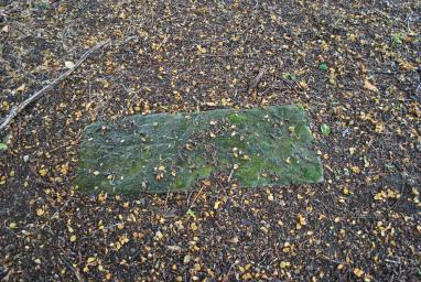Kinneil Estate Kirkyard (7)