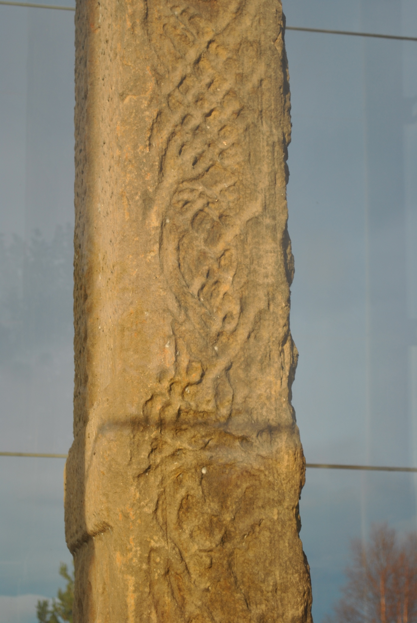 Sueno's Stone Pictish symbol stone Forres Inverness Graveyards of Scotland