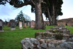 Fodderty Cemetery (9)