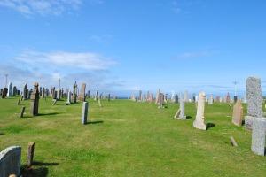 graves in summer sun
