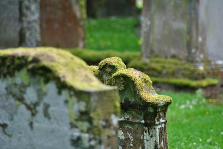 sun moss gravestones