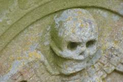 scarry skeleton