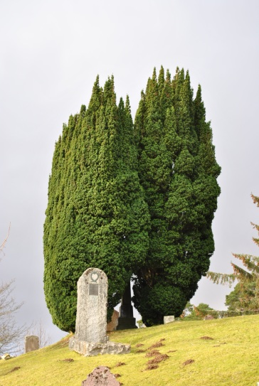 Cnoc na Bhain graveyard Achanalt ©nme Nellie Merthe Erkenbach Graveyards of Scotland (27)