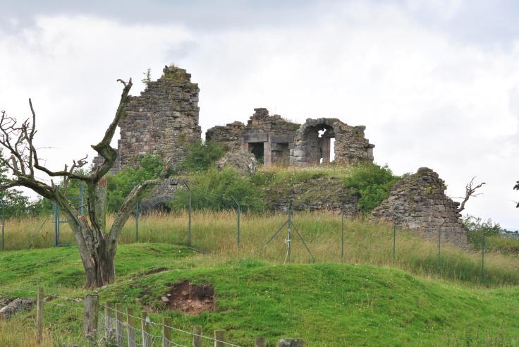 castle ruin dead tree