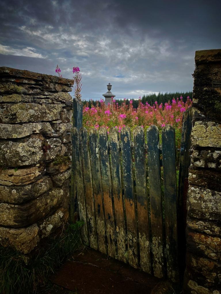 Camster burial ground @nme Nellie Merthe Erkenbach Graveyards of Scotland